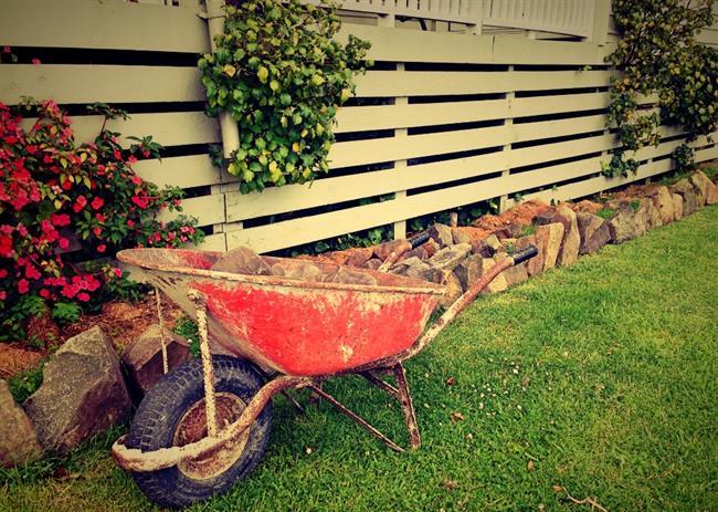 Septembrska opravila na vrtu: Ste se jih že lotili?