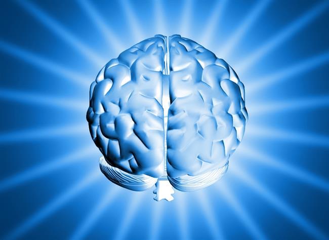 Možganska kap pri nas prizadene več kot deset ljudi na dan