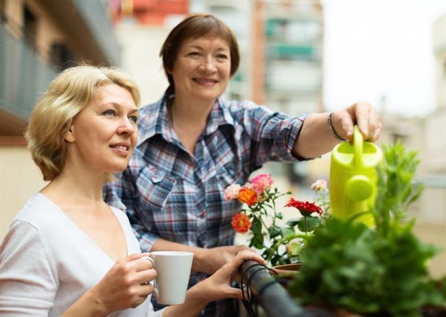 Praktični naravni nasveti za še lepše in cvetoče balkonske rože