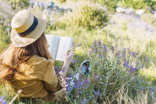 5 idej za lahkotno poletno branje
